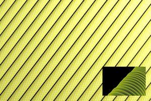 Светящийся 550 паракорд - желтый от Survival Market